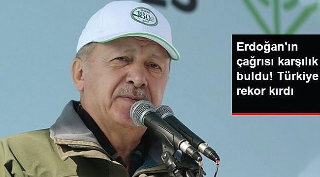 Türkiye, Çorum'da diktiği 303 bin fidanla, ağaç dikmede Guinness rekorunu kırdı,