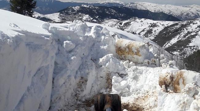 Gümüşhane'de ekipler mart ayında karla mücadele yapıyor.