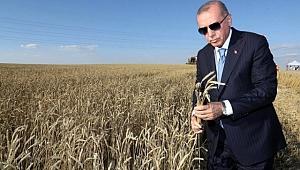 Erdoğan, AK Parti Erzurum İl Başkanı Öz'ün dile getirdiği tohum talebini çözüme kavuşturdu.