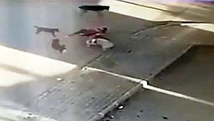 Saldırıya uğrayan köpeğini kurtarmak için köpeklerin arasına böyle daldı.