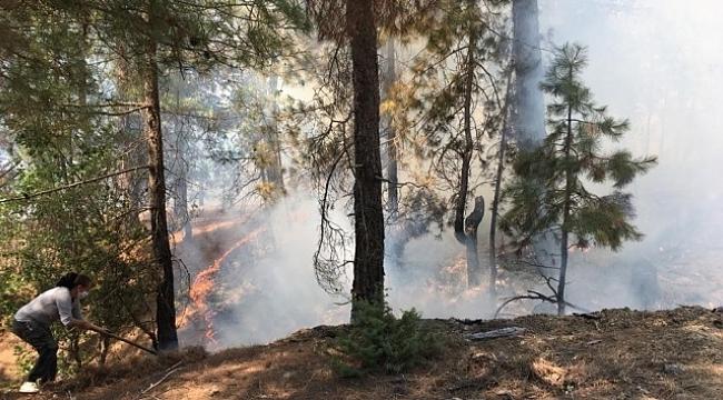Kozan'da orman yangını.
