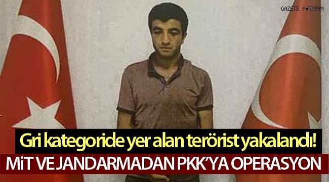 PKK'lı 'Şiyar Erzurum' kod adlı İslam BİLİZ ortak operasyonla yakalandı!.