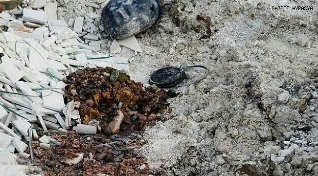 İzmir'de boş arazide insan vücudu parçaları bulundu.